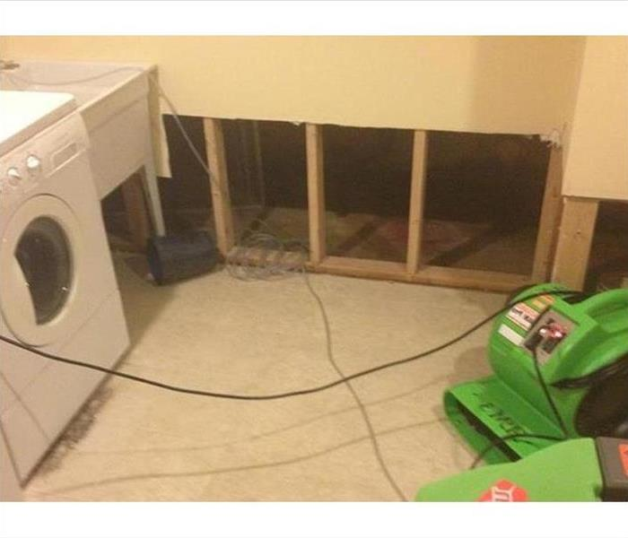 Mold Remediation in New Smyrna Beach After