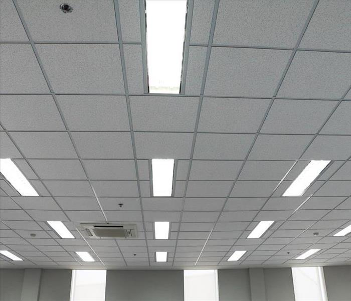 Commercial Commercial Water Removal in New Smyrna Beach is the Quickest Way to Repair Office Ceiling Tiles