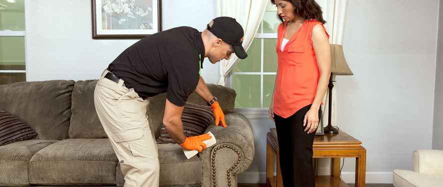 New Smyrna Beach, FL carpet upholstery cleaning